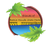 Friends of Bahia Honda State Park